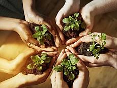 Nuestro compromiso medioambiental.
